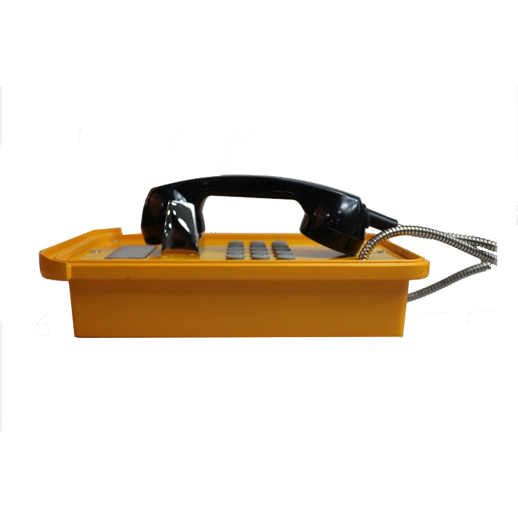 Outdoor telephone